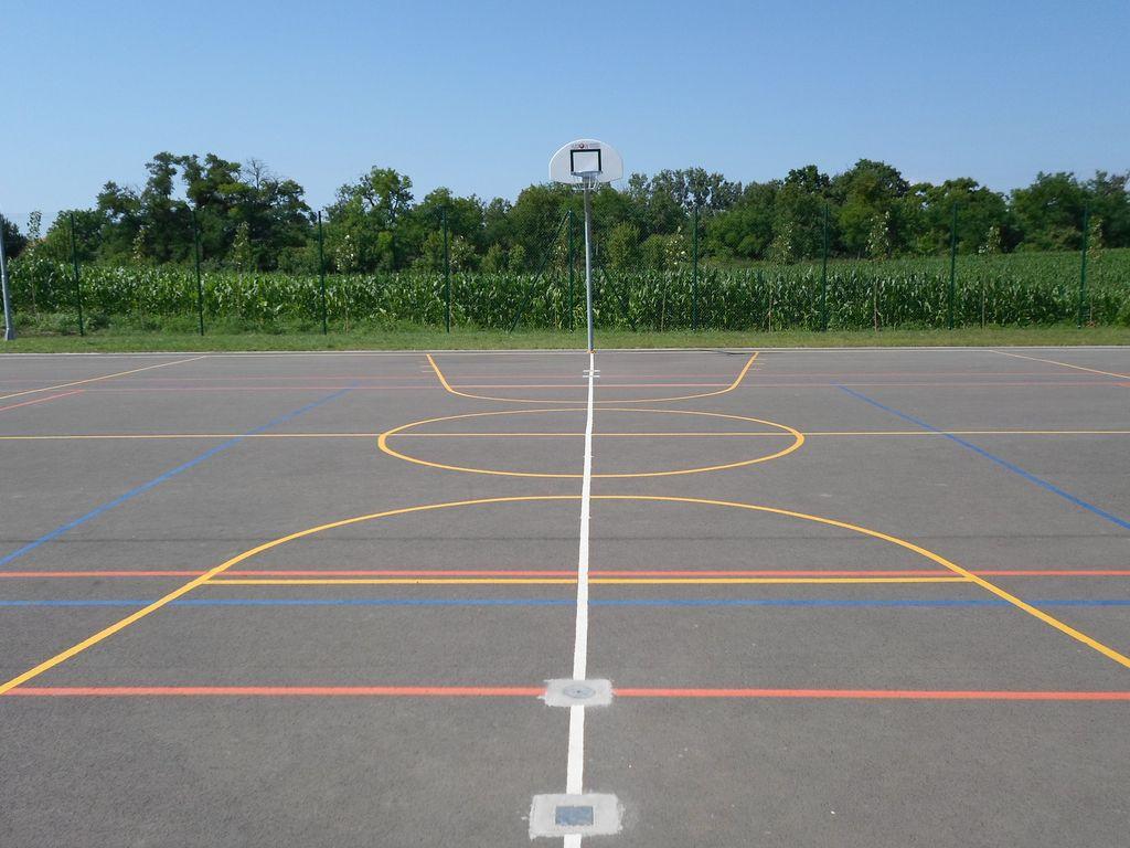Kosárlabda pálya