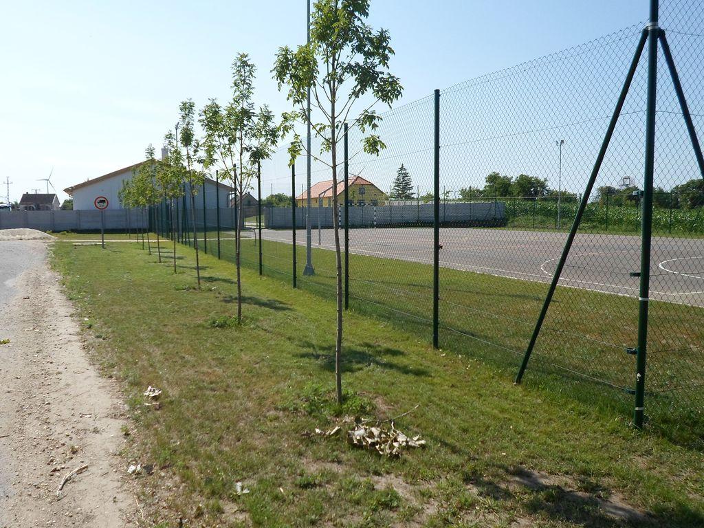 Kerítés és fasor